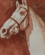 Momcilo Macanovic 40x60cm – akvarel