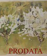 Fedja Soretic 40x50cm – akvarel