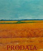 galerija slika Kosta-Bradic-56x70cm