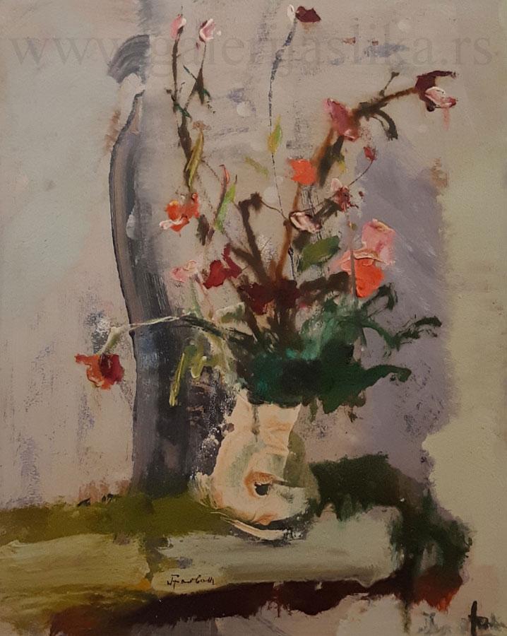 galerija slika Nikola-Graovac
