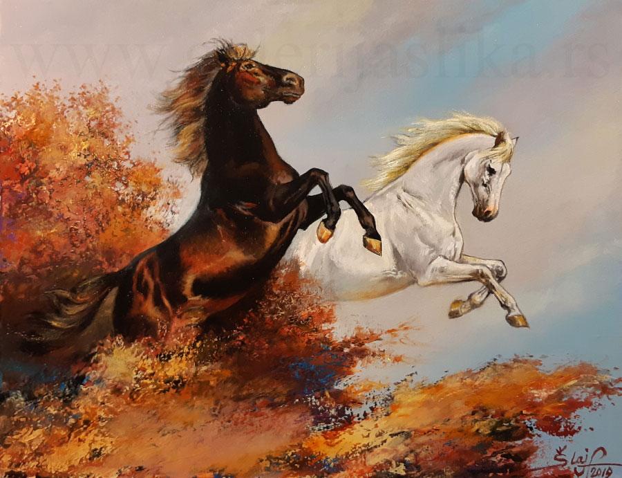 galerija slika Sandor Slajf 40x50cm